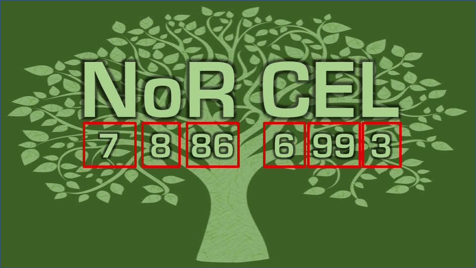 NoR-CEL 2020 – Network of Researchers on the Chemical Evolution of Life